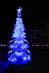 クリスマス前 034