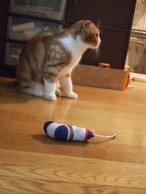 靴下のおもちゃ