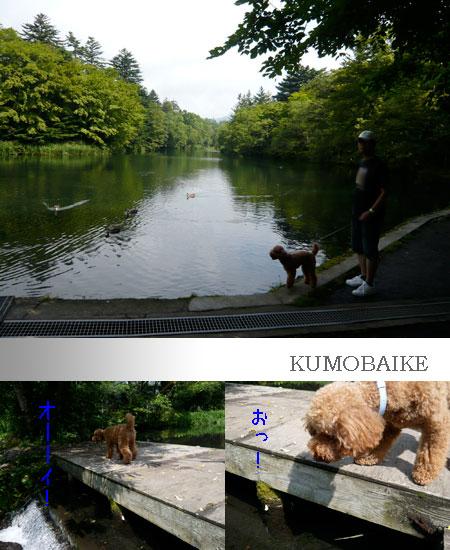 031_kumobaike_1.jpg
