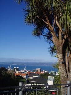 trip+in+NZ+037_convert_20081001090509[1]
