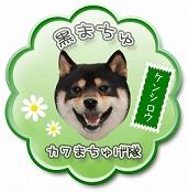 105_2_まちゅげ隊s-
