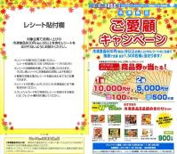 EPSON003_20101021232841.jpg