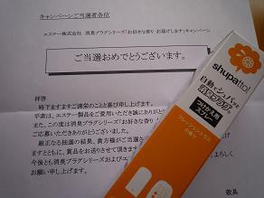 P1010747.jpg