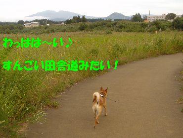 inakamichi