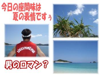 P9050555.mix 男のロマン?