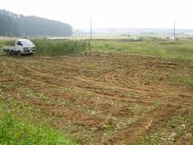 最後の畑3