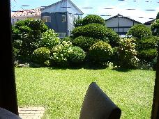 P1030054(1).jpg
