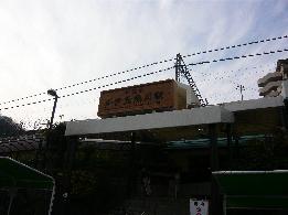 P1030806(1).jpg