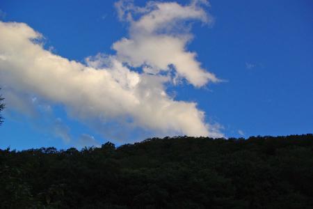 空が綺麗だったので
