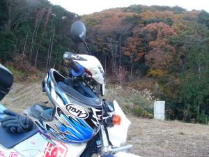 のんびり林道 9