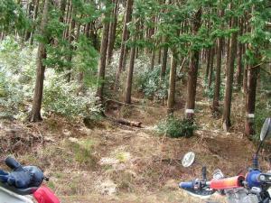 のんびり林道 7