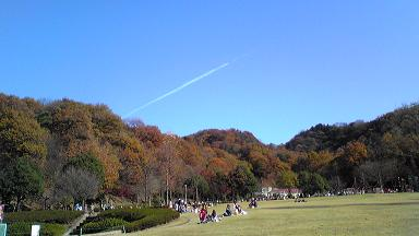 20091202_1.jpg