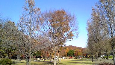 20091202_2.jpg