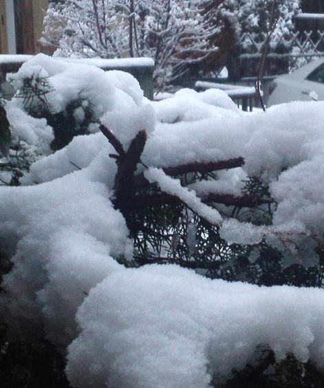 冬戻り (2)