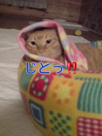 縺薙※縺、縲<div class=