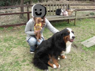 snap_kiki321_200942182728.jpg