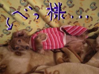snap_kiki321_20094321411.jpg