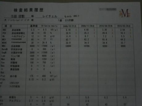 2010-5-31-9