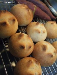 リンゴ酵母ストレートパン