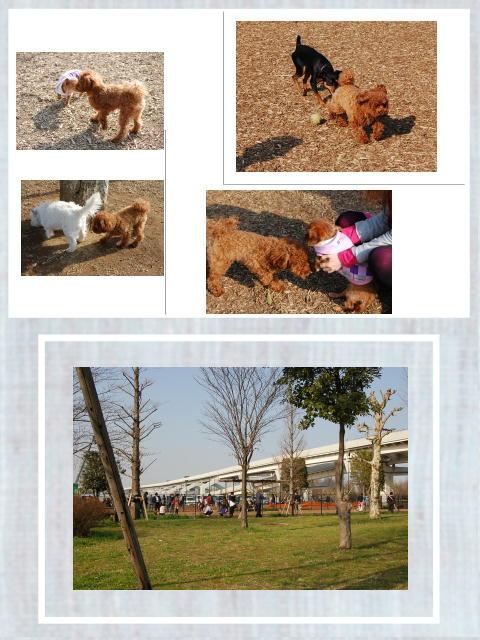 舎人公園1