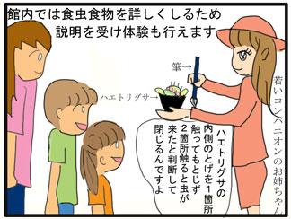 食虫植物01