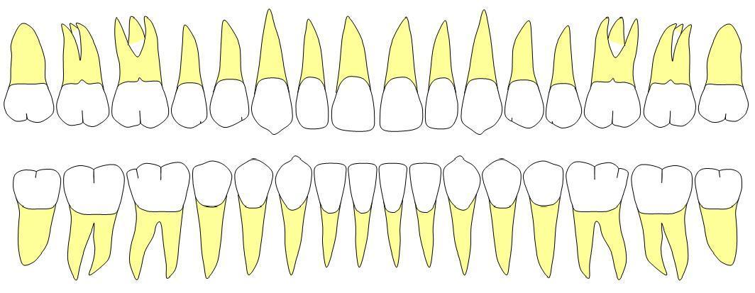 teeth0423.jpg