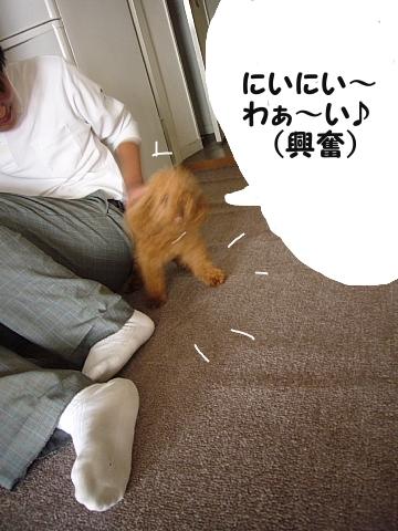 conv0020_20081004140036.jpg
