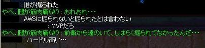 dun_seitai4.jpg