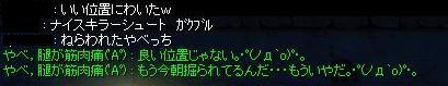 dun_seitai5.jpg
