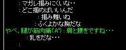 dun_seitai6.jpg