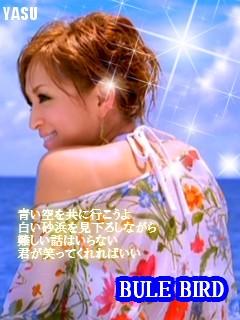 a_51878_0.jpg