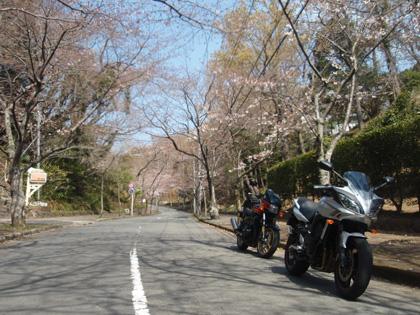 伊豆高原駅付近