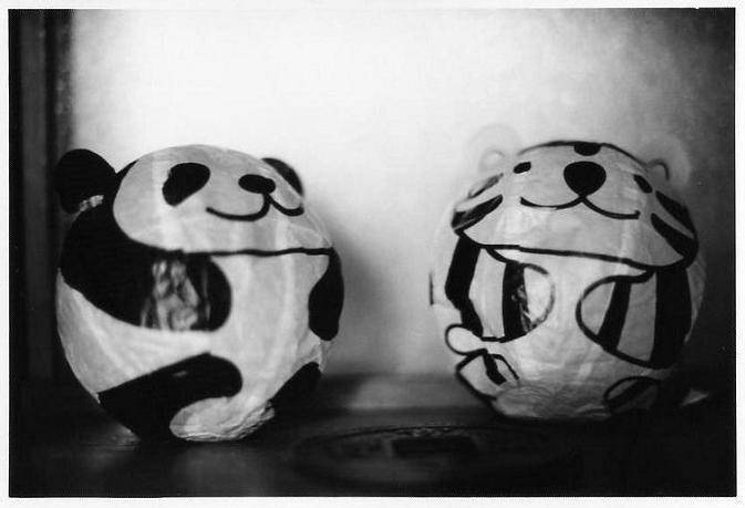 panda669.jpg