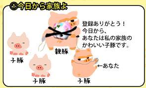 豚のファミリー構成です