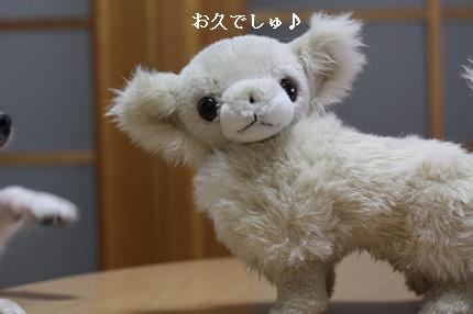 IMG_5507・2