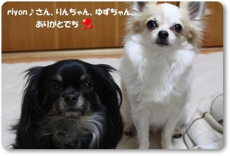 IMG_6459・2