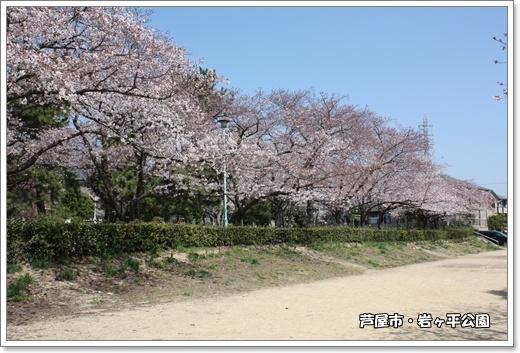 IMG_8459・2