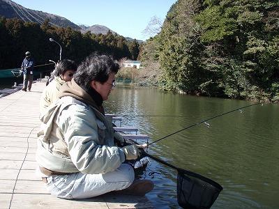 2008-11.jpg