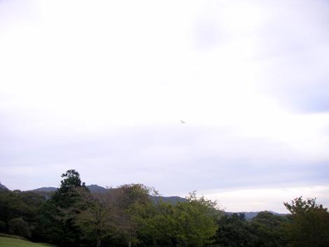 奈良公園007