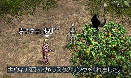PIQ4.jpg