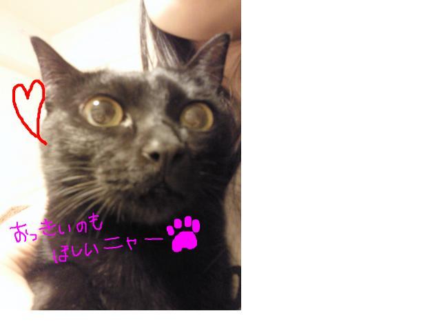 snap_kizikuro_201122141446.jpg