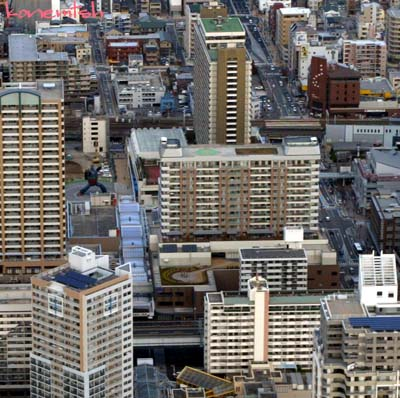 2010tetu.jpg