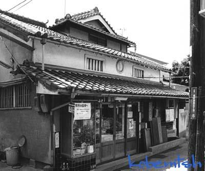sumaura5L.jpg