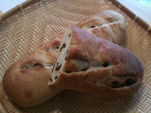 パン上級取材1