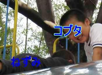 幼稚園IMG_2072