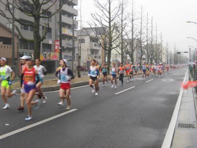 愛媛マラソン4