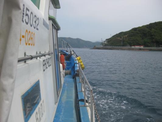 宇和島の釣り 022