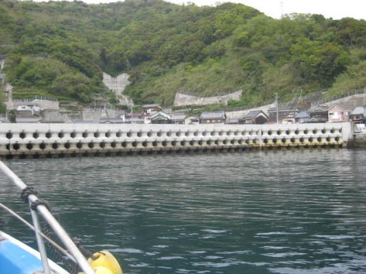 宇和島の釣り 035