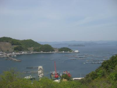 宇和島の釣り 006