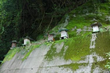 山の巣箱2